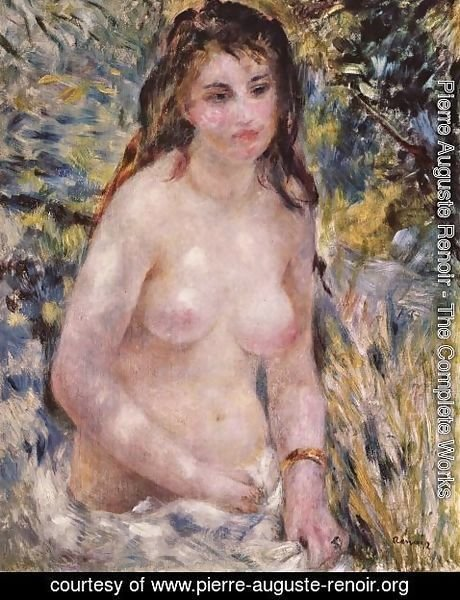 Pierre Auguste Renoir - Nude in the Sun