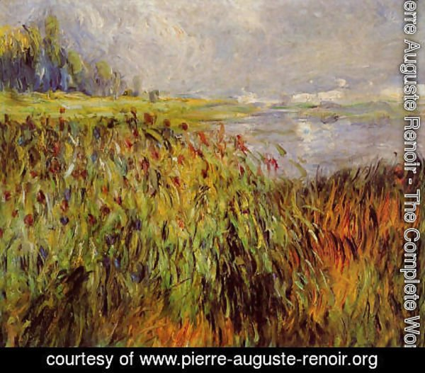 Pierre Auguste Renoir - Bulrushes On The Banks Of The Seine