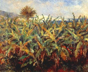 Pierre Auguste Renoir - Field Of Banana Trees