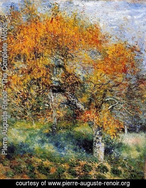 Pierre Auguste Renoir - The Pear Tree